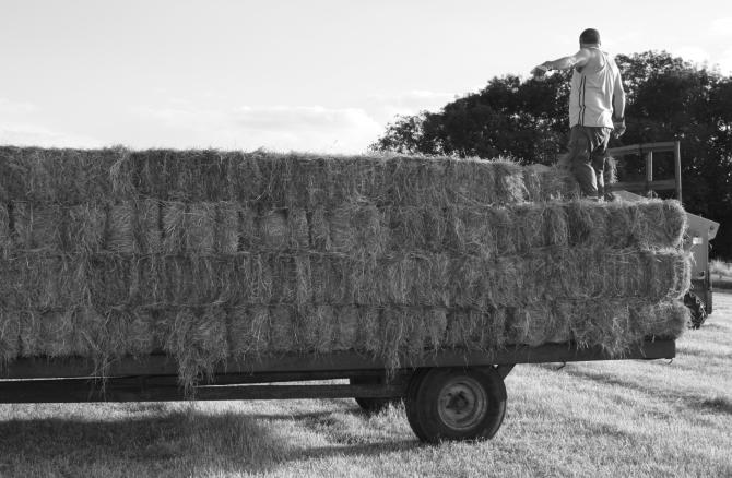 haytruck