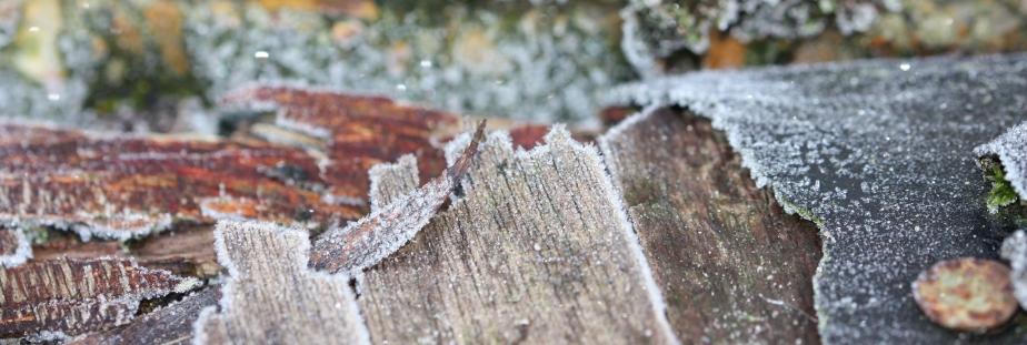 woodstore roof