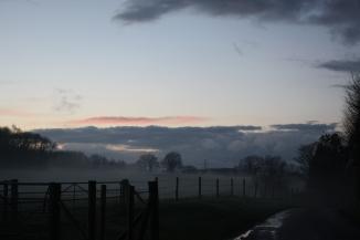 misty field 2
